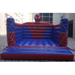 Salta Salta di Spiderman