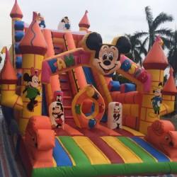 Grande Scivolo Disney